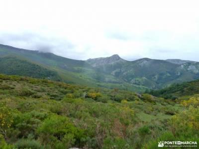 Montaña Palentina;Fuente Cobre;Tosande; la mesta la maliciosa cami de cavalls menorca puerco